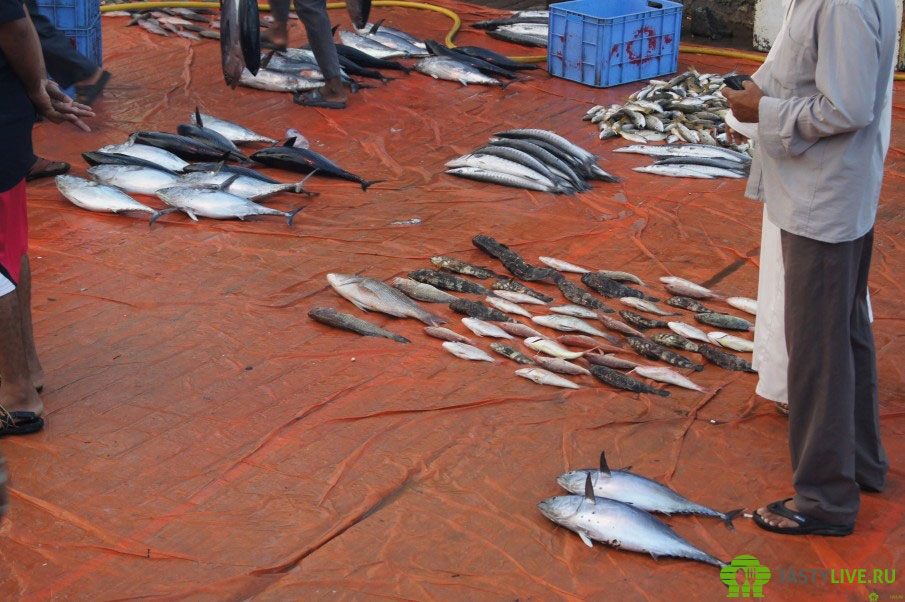 Рыбный рынок Оман